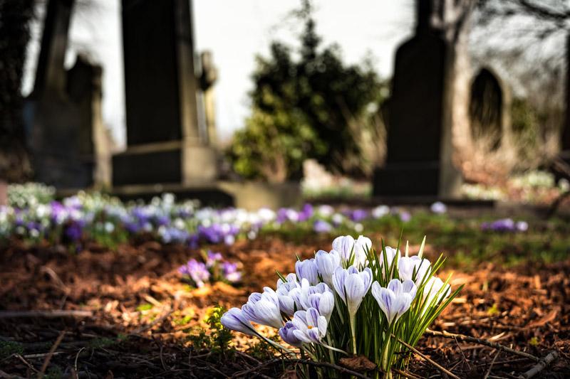 Anmälan till begravning